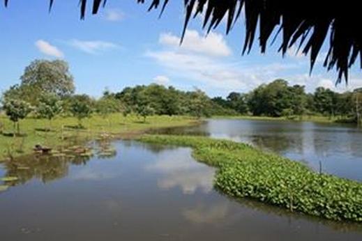 Navigation sur l' Amazone